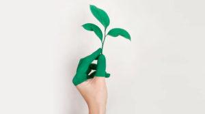 """La estrategia """"ecofriendly"""" que finalmente es la demanda"""